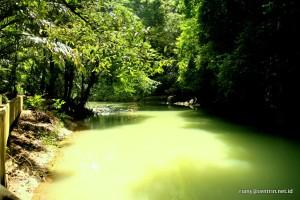 Suasana hutan lindung di Batimurung