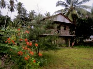 Rumah Panggung di Batu Burung