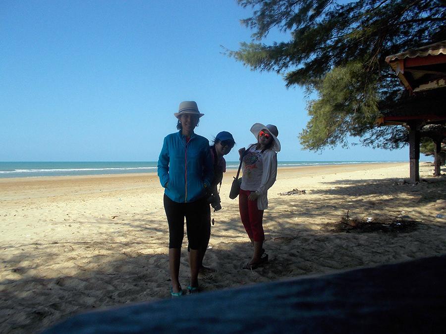 Pantai dengan Cemara Udang